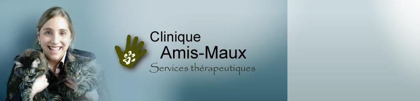 Clinique Amis Maux Quebec