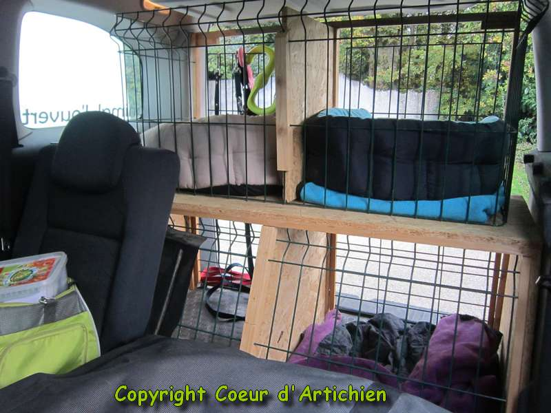 coeur d 39 artichien m diation animale 44 zootherapie cazoo am nager sa voiture pour la m diation. Black Bedroom Furniture Sets. Home Design Ideas
