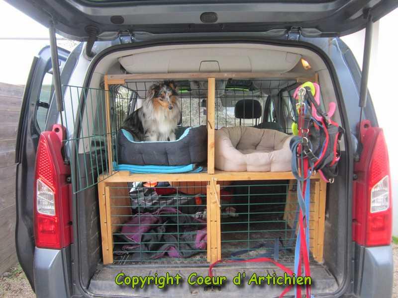 cage chien pour voiture. Black Bedroom Furniture Sets. Home Design Ideas