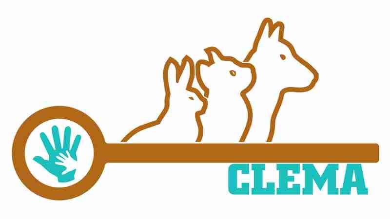 Formation CLEMA les clés de la médiation animale