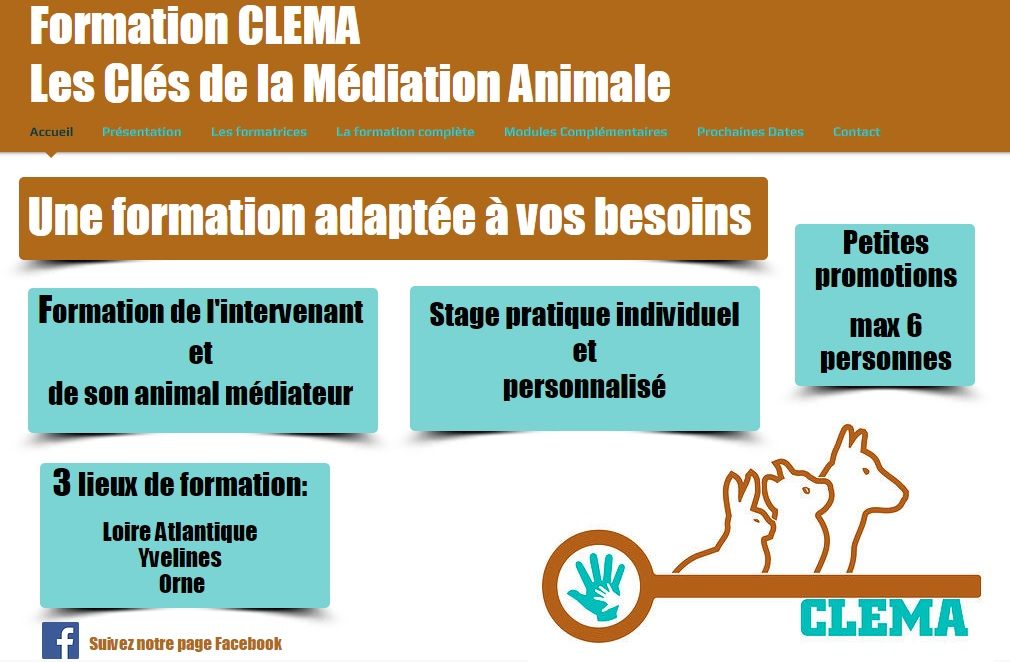 formation CLEMA