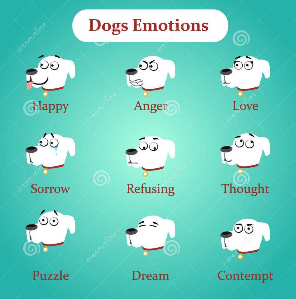 coeurdartichien_emotions