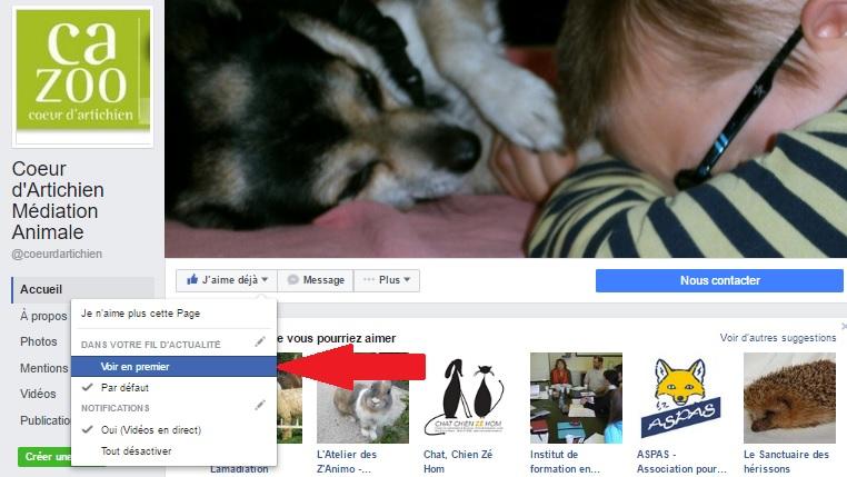tuto page facebook coeur d'artichien