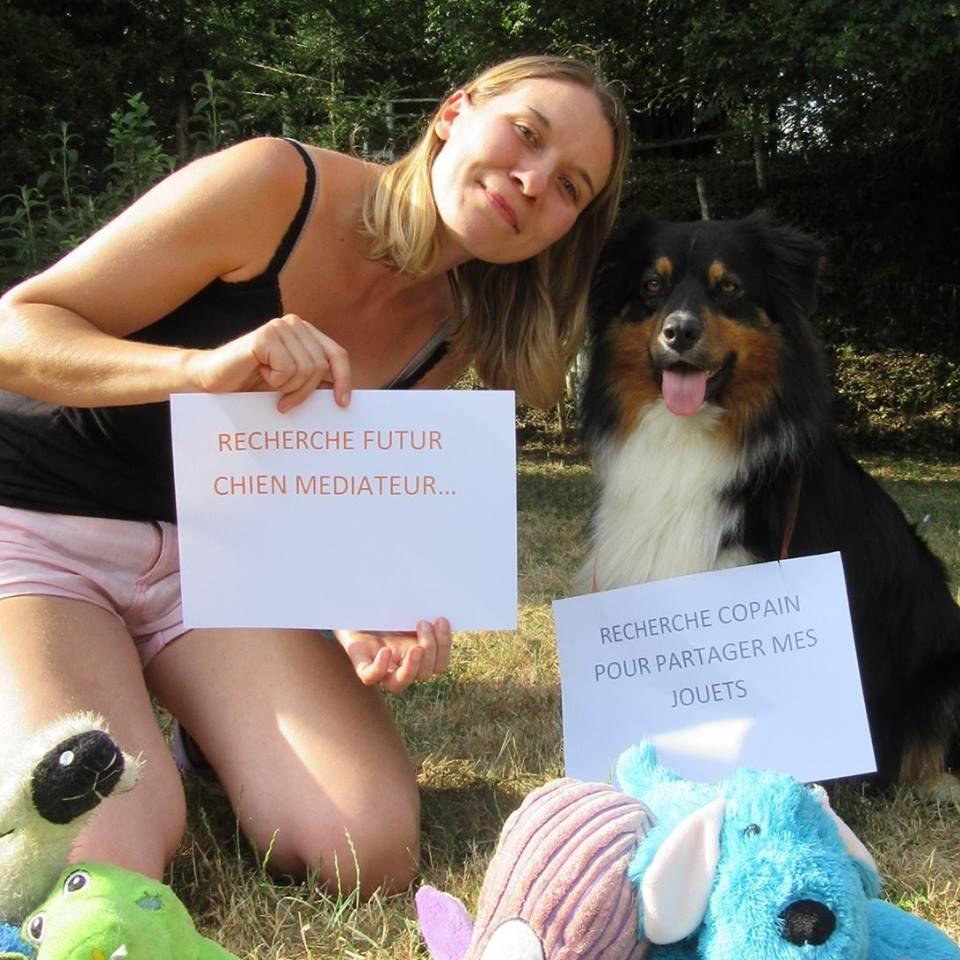 recherche chien mediateur
